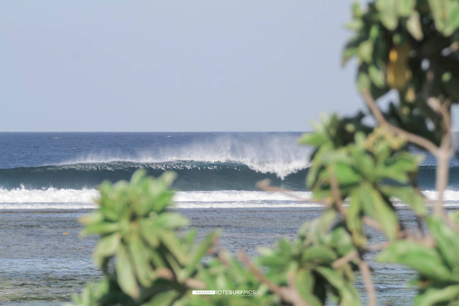 Surfing Rote