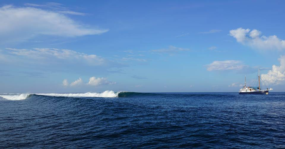 Mentawai boat or resort