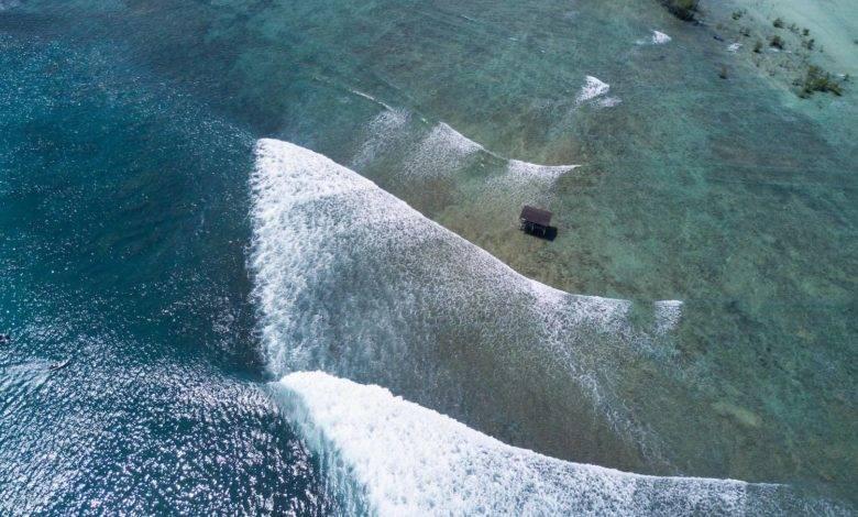 Mentawai Surf Boat or Resort