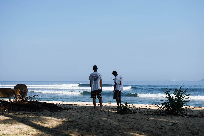 Surfing Krui Way Jambu