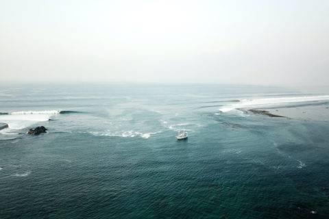 Surf Charter Sumba