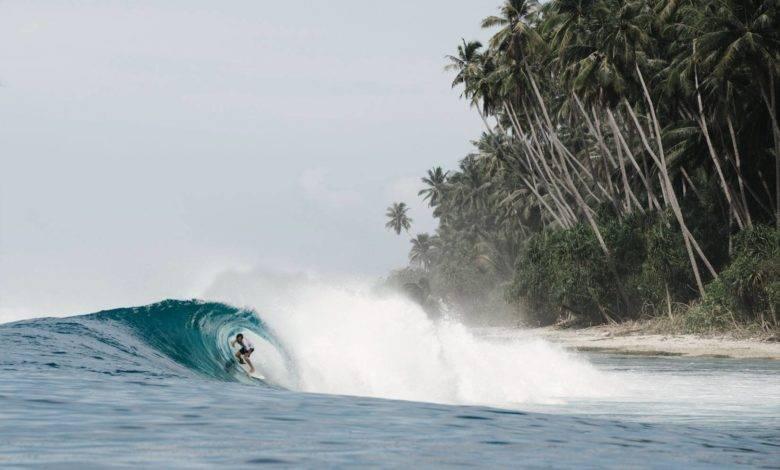 Surf Coaching Retreats
