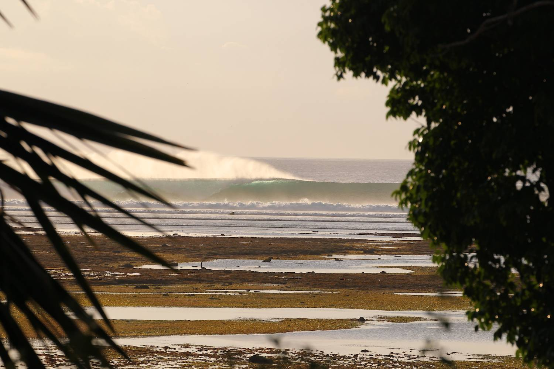 Surf G Land