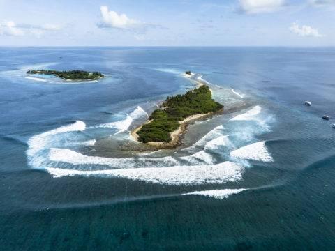 Surf Coaching Maldives